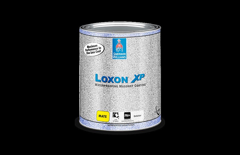 Loxon XP pintura