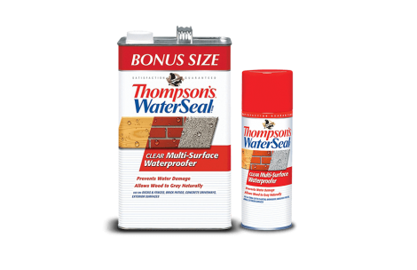 Thompson's® Waterseal® Clear